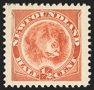 Sale Number 1130, Lot Number 1153, Canadian Provinces - NewfoundlandNEWFOUNDLAND, 1887-96, -1/2c Newfoundland Dog Group (56-58; SG 49, 59, 62), NEWFOUNDLAND, 1887-96, -1/2c Newfoundland Dog Group (56-58; SG 49, 59, 62)